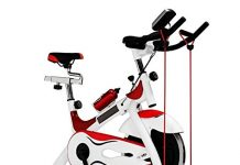 Bici de spinning MG 701-20